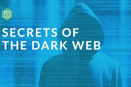 What's Hiding In The Dark Web? Infographic