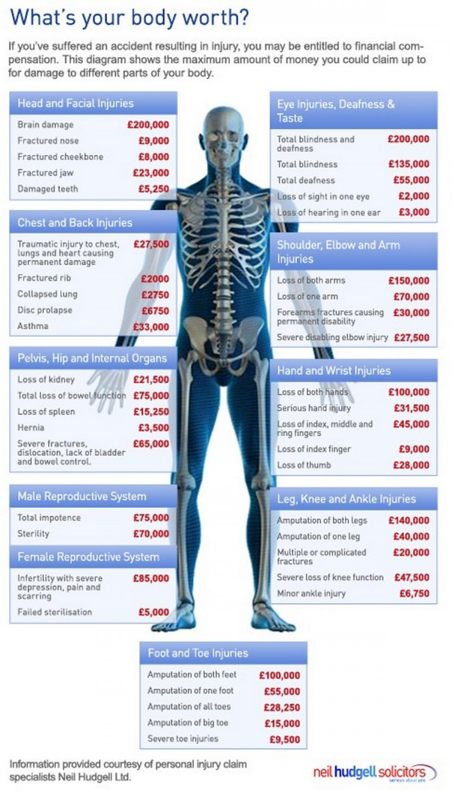 Whats Your Body Worth Visually - How much is the human body worth infographic