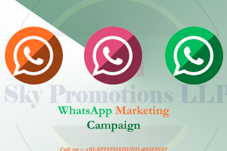 WhatsApp Marketing Campaign Service Provider in Delhi Infographic