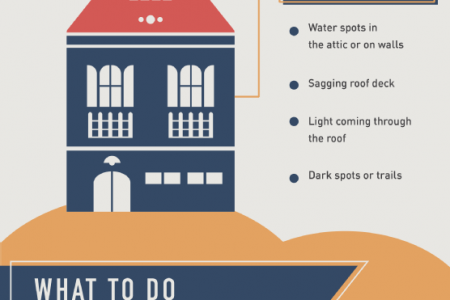 When Disaster Strikes: Hurricanes and Your Roof  Infographic