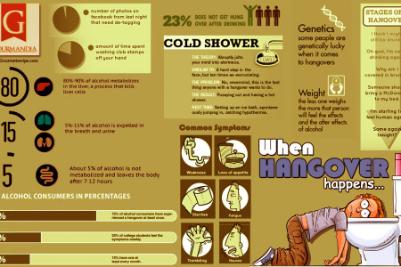 When Hangover Happens Infographic