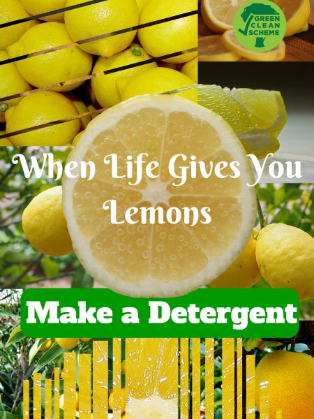 When Life Gives You Lemons Infographic