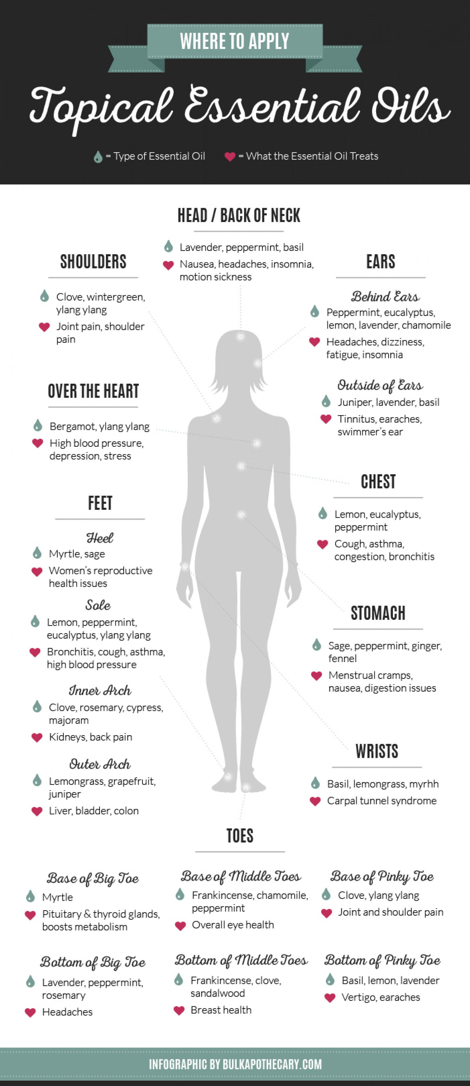 Where to Apply Topical Essential Oils Infographic