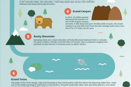 Where To Travel The USA: Top National Parks Infographic