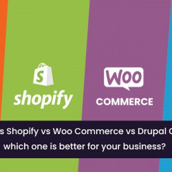 Which E-Commerce platform is the best for your business?