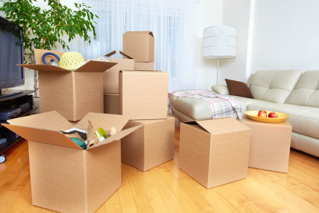Which Is The Best Moving Association In Pune? Infographic