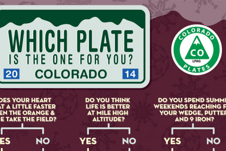 Which plate is the one for you? Infographic