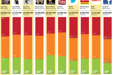 Who Tweeted? The Appearance of Social Media Infographic