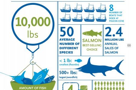 Whole Foods By the Numbers: FISH Infographic