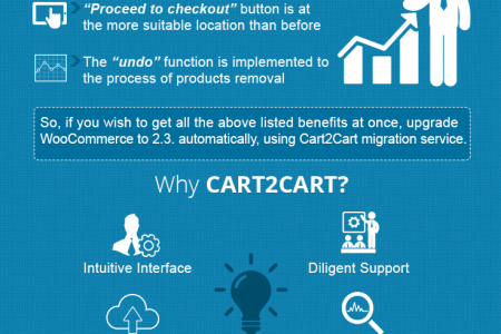 Why and How to Perform a WooCommerce Upgrade to 2.3? Infographic