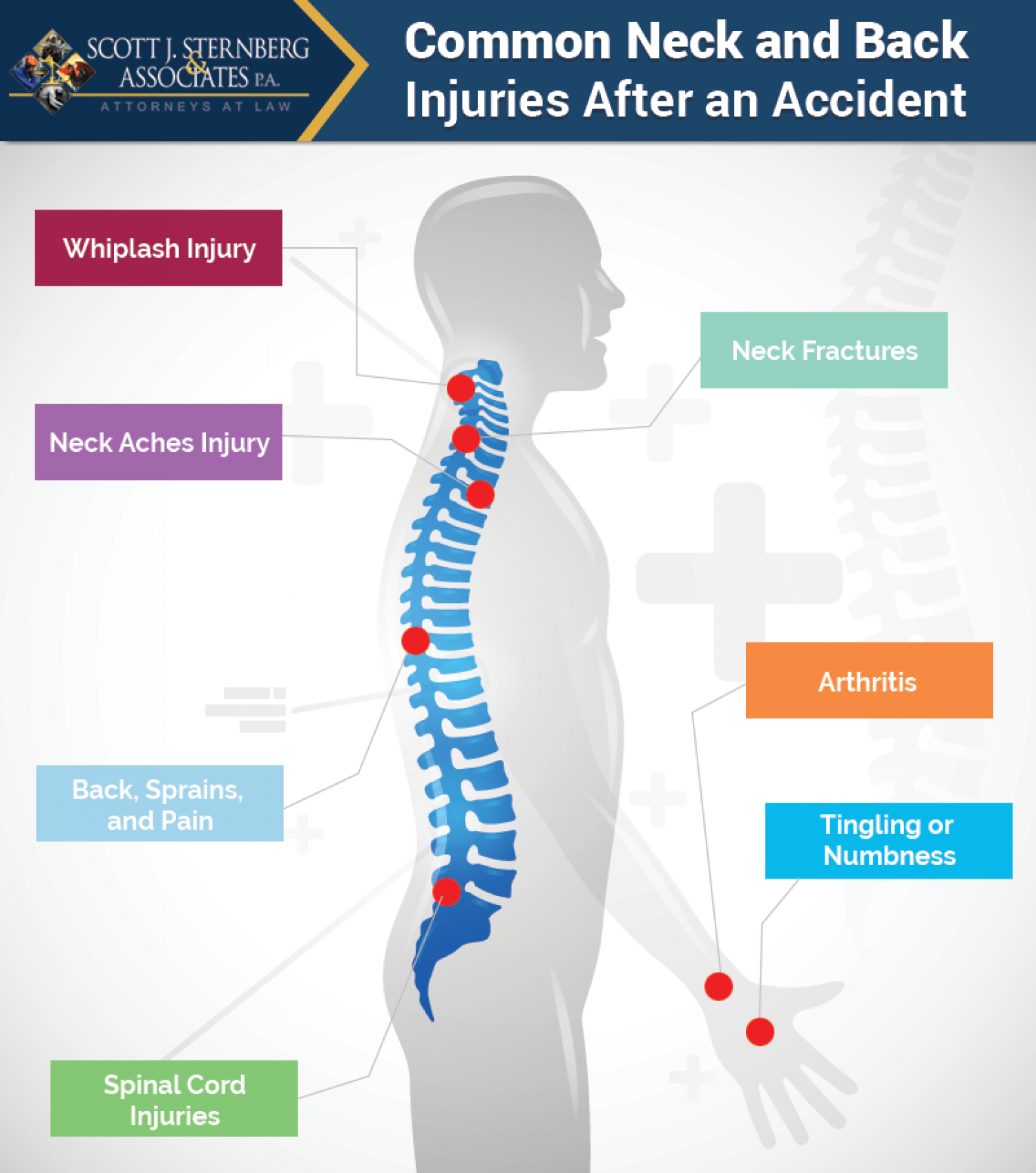 Why Are Neck and Back Injuries So Common After an Accident? Infographic