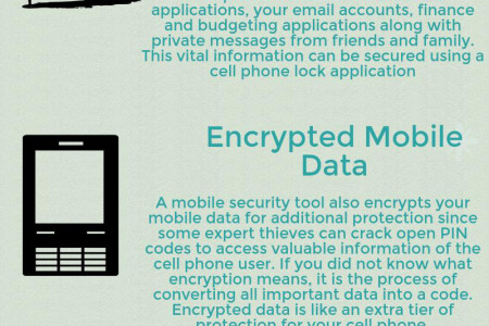 WHY CELL PHONE LOCK APPLICATIONS ARE USEFUL IN MAINTAINING MOBILE DATA SECURITY Infographic
