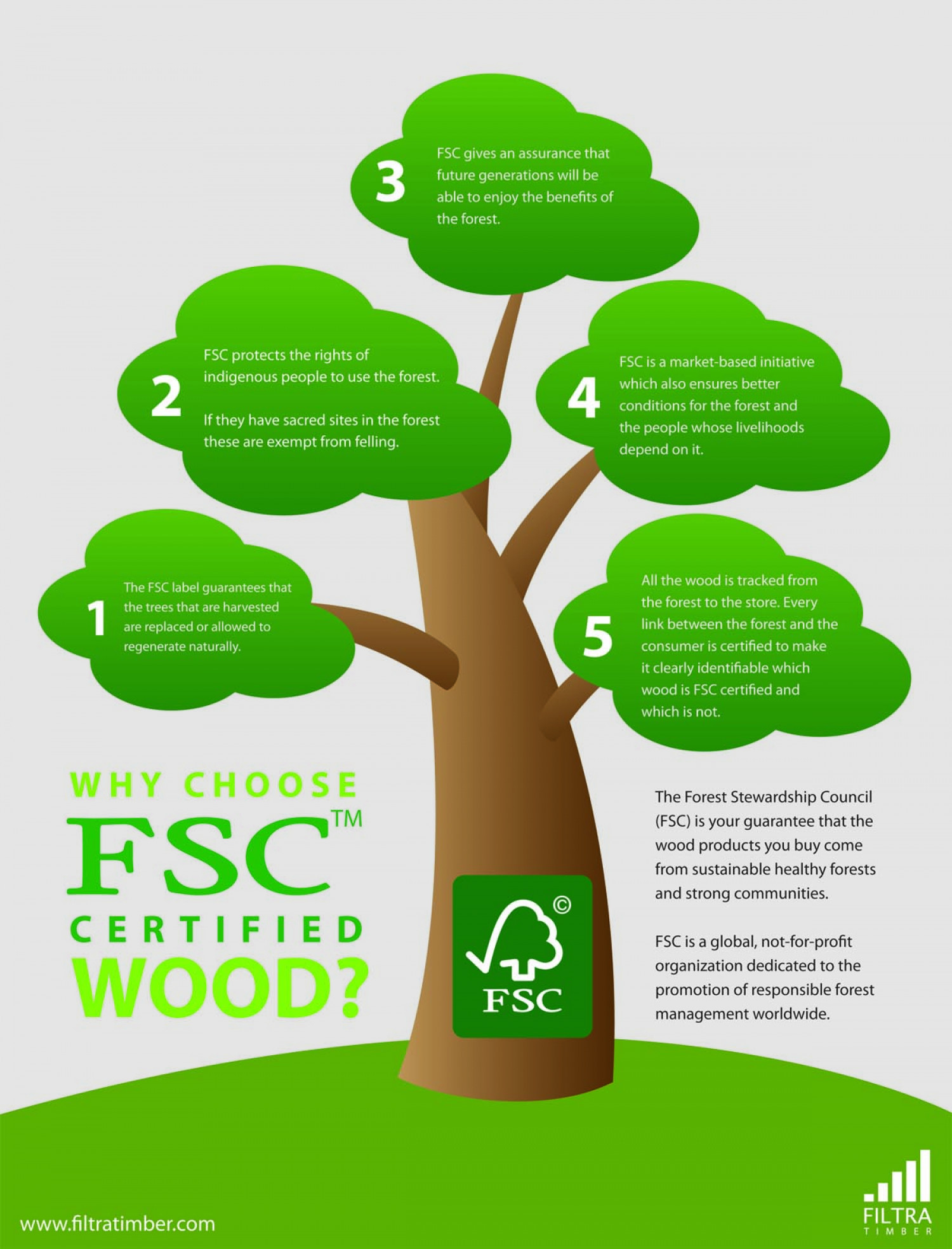 Why Choose FSC Certified Wood? (ver. 2) Infographic