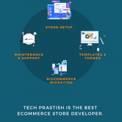 Why Consider BigCommerce development services for Your New Business?