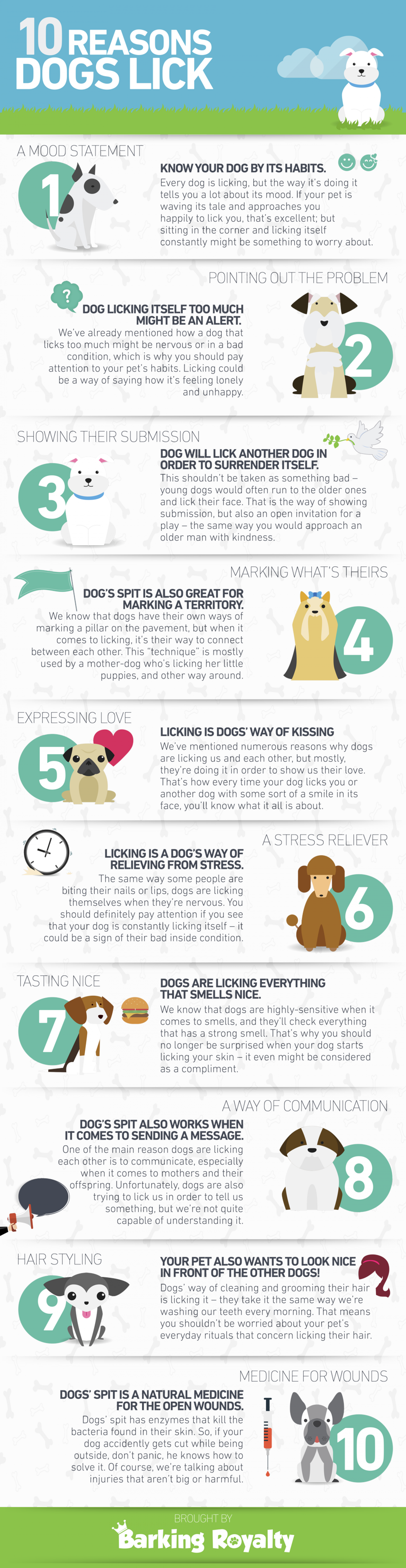 Why do dogs lick? Infographic