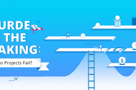 Why Do Projects Fail? Infographic