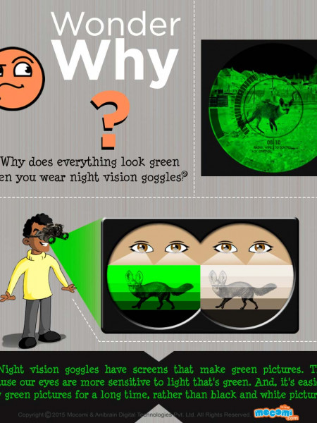 Why does everything look green when we wear Night Vision Goggles? Infographic
