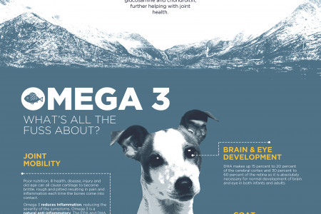 Why Fish4dogs? Infographic
