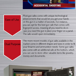 Why Gun Safe Is A Necessity For All Gun Owners | Visual ly