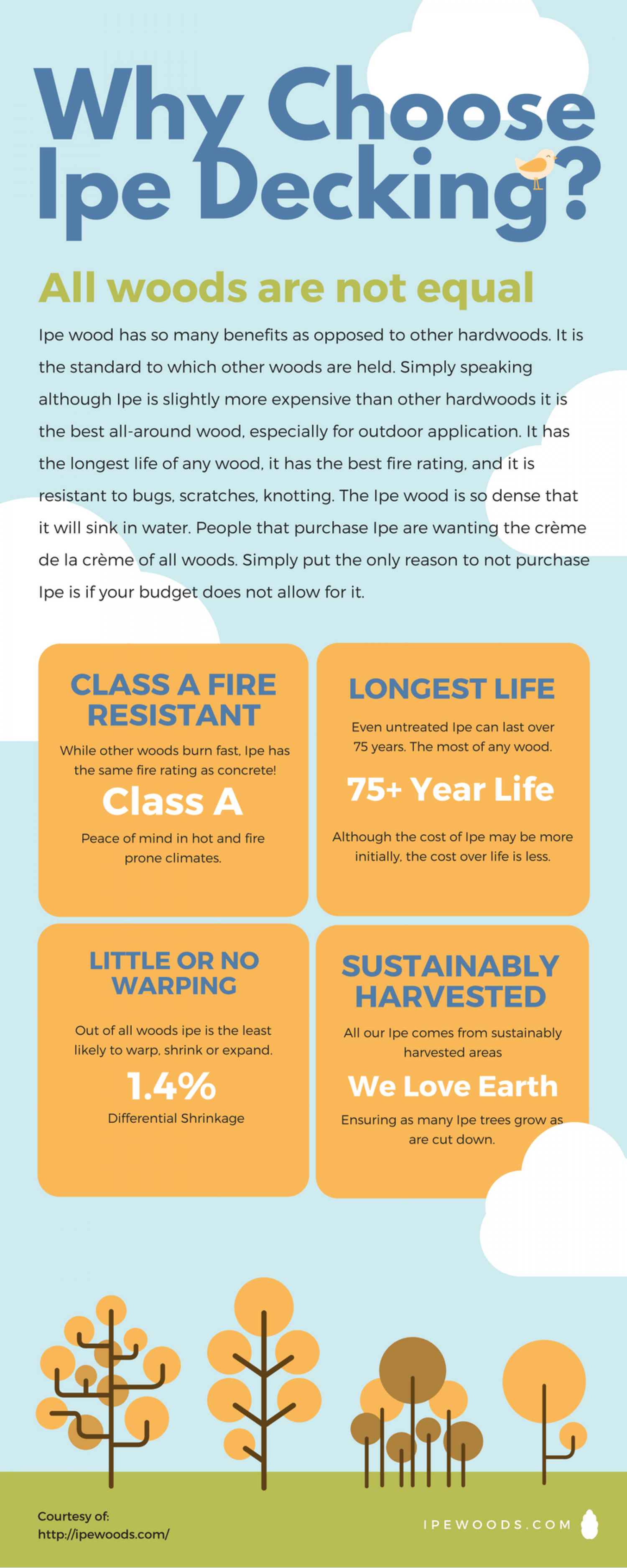 Why Ipe Wood is the Best Infographic