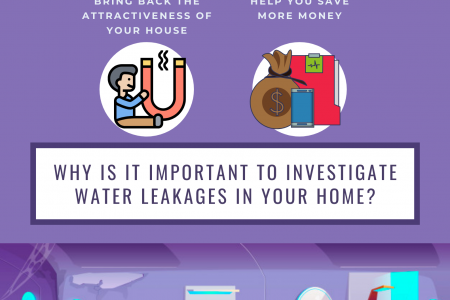 Why is it Important to Investigate Water Leakages in Your Home? Infographic