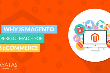 WHY IS MAGENTO A PERFECT MATCH FOR B2B E-COMMERCE? Infographic
