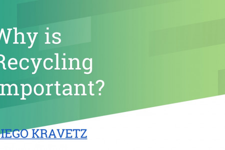 Diego Kravetz - Why is Recycling Important? Infographic