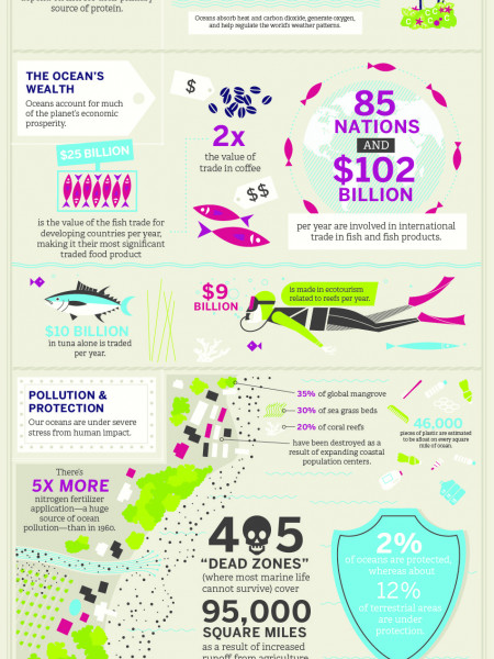 Why Protect Oceans? Infographic