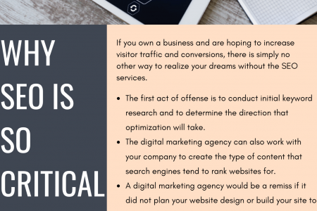 Why SEO Is So Critical Infographic