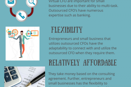 Why Should you Choose a Virtual CFO for Your Small Business Infographic