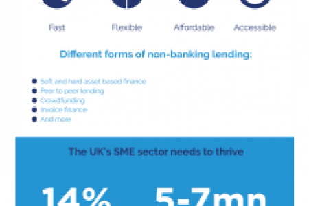 Why SMEs Don't Need to Borrow From the Bank Infographic