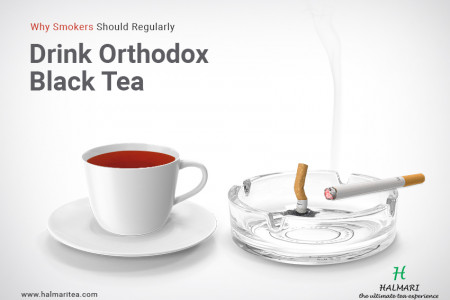 Why Smokers Should Regularly Drink Orthodox Black Tea Infographic