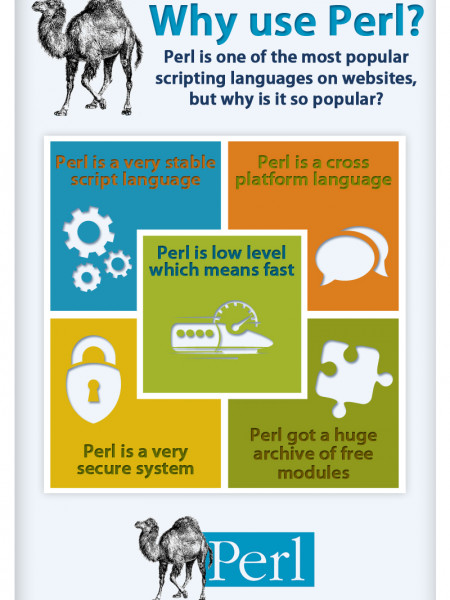 Why use Perl Infographic