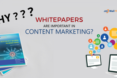 Why Whitepapers are important in Content Marketing? Infographic