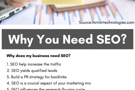 Why You Need SEO? Infographic