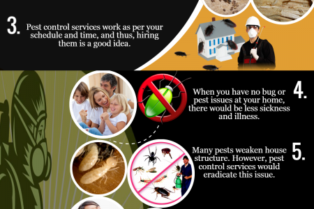 Why You Should Go For Pest Control Services? Infographic