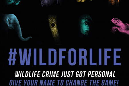 Wild for Life #Wildforlife Infographic