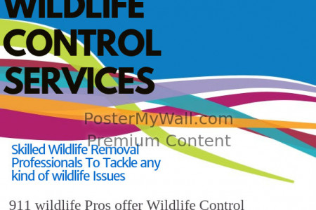 Wildlife Control Burlington | Animal Removal Services Infographic