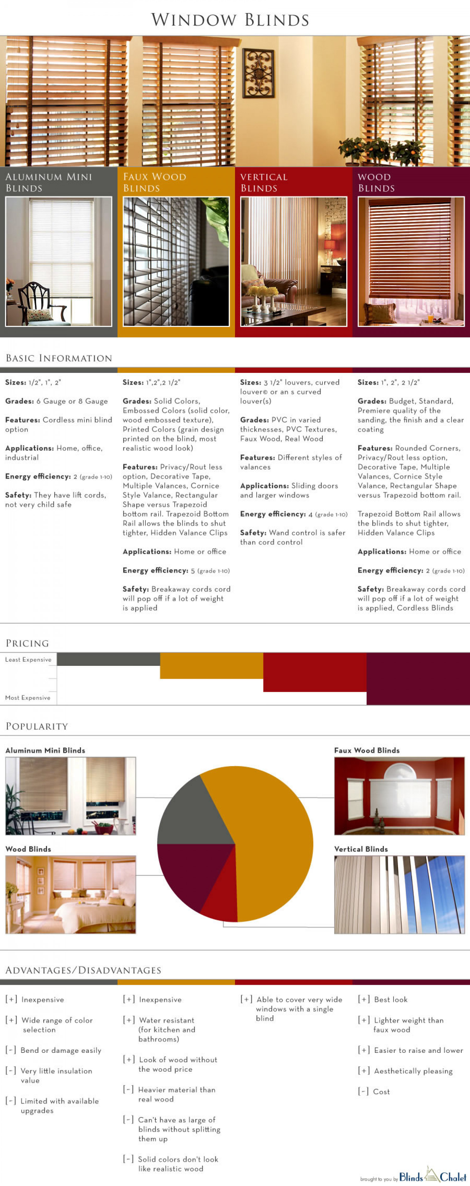 Window Blinds Infographic Infographic