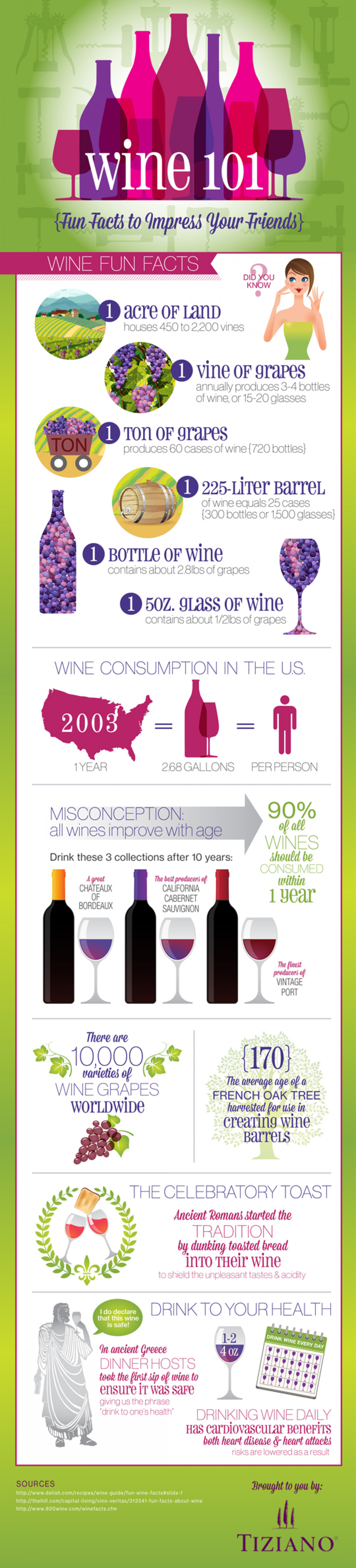Wine 101: Fun Facts to Impress Your Friends Infographic