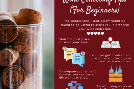 Wine Collecting Tips (For Beginners) Infographic