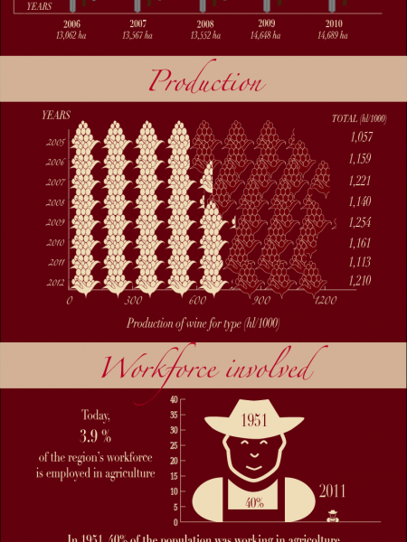 Wine in Trentino Infographic