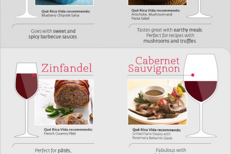 Wine Pairing: Looking for the Perfect Wine Match Infographic