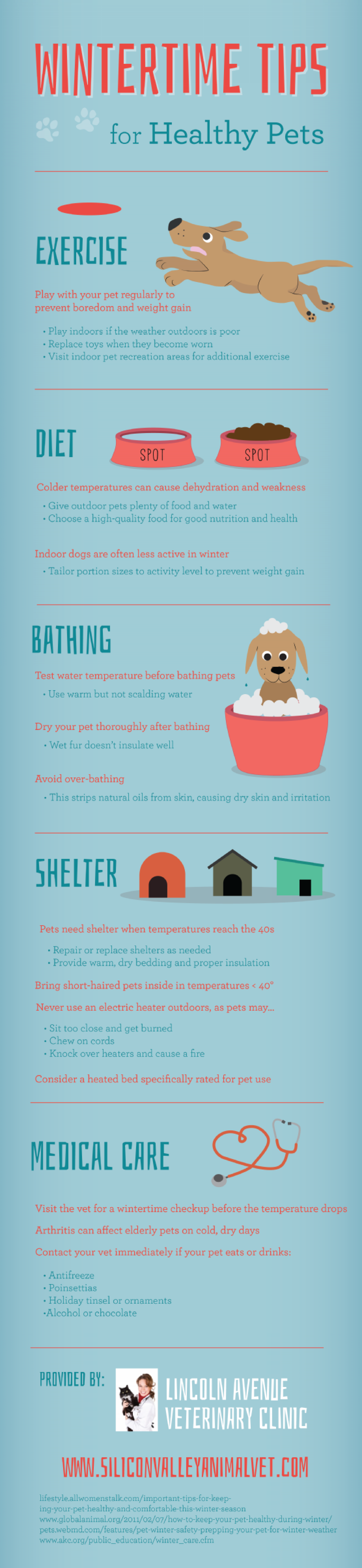 Wintertime Tips for Healthy Pets Infographic
