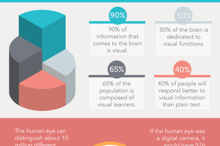 'With Eyes Wide Open': Visual Audiences In the Digital Realm Infographic