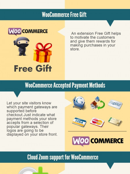 WooCommerce Top 10 Plugins Infographic