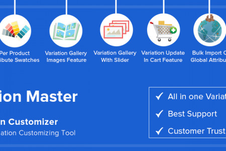 WooCommerce Variation Master Infographic