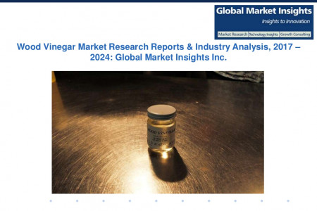 Wood Vinegar Market Share, Present Efficiencies and Future Challenges from 2017 to 2024  Infographic
