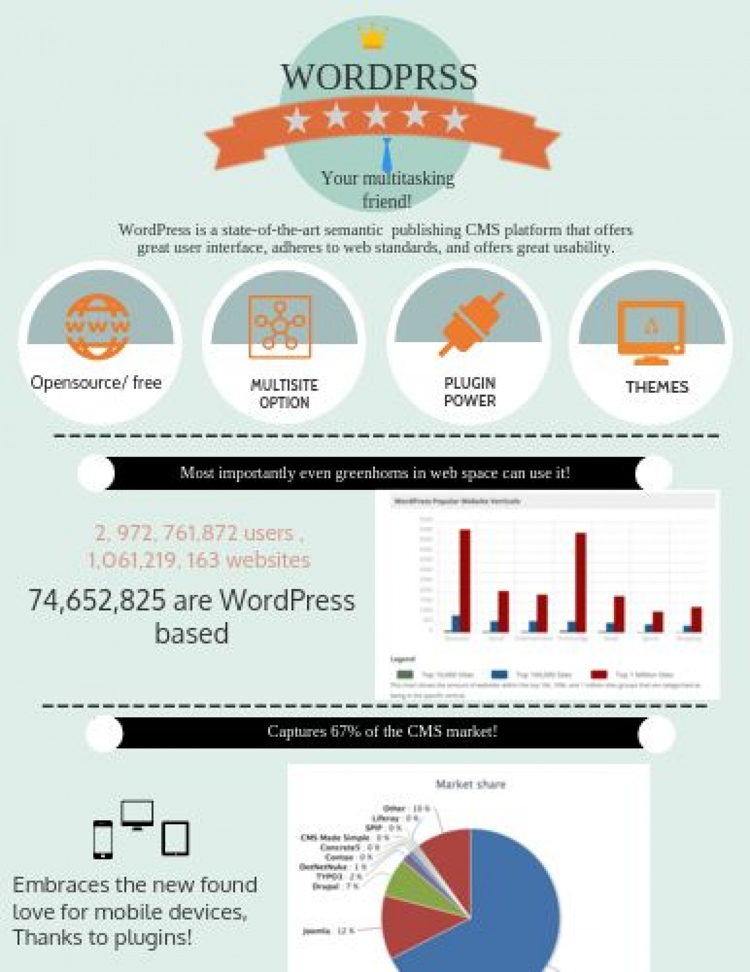 WordPress - Best Ever CMS Platform on Earth Infographic