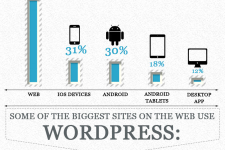 WordPress: A Decade in the Making Infographic